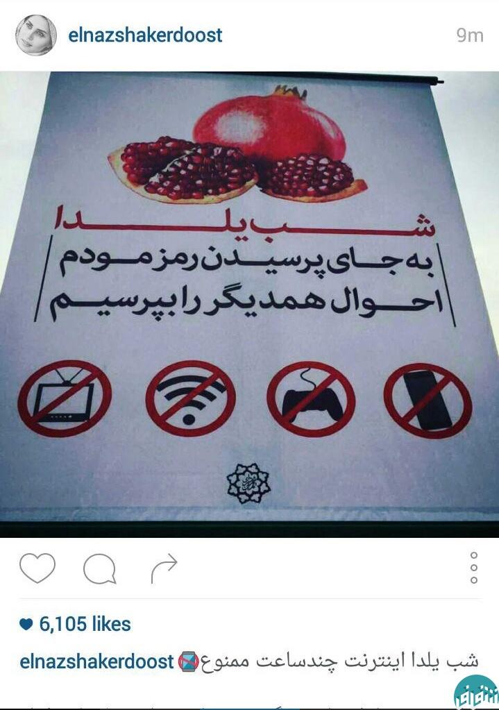 الناز شاکردوست از کمپین ضد اینترنتی یلدا حمایت کرد!