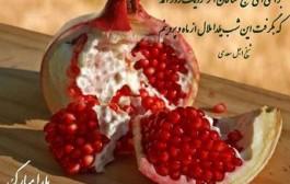 عکس نوشته های زیبا برای شب یلدا ۹۴